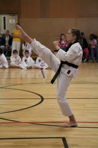high_front_kick_2_by_phacops-d5om2cb